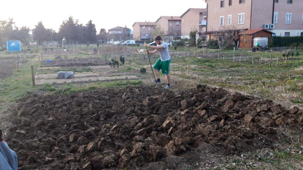 Lavorazione dell'orto con la vanga